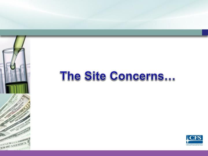 The Site Concerns…