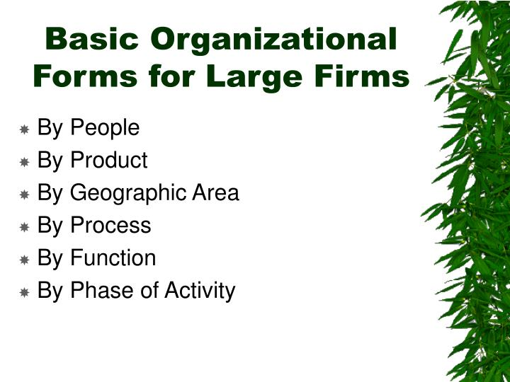 Basic Organizational Forms for Large Firms