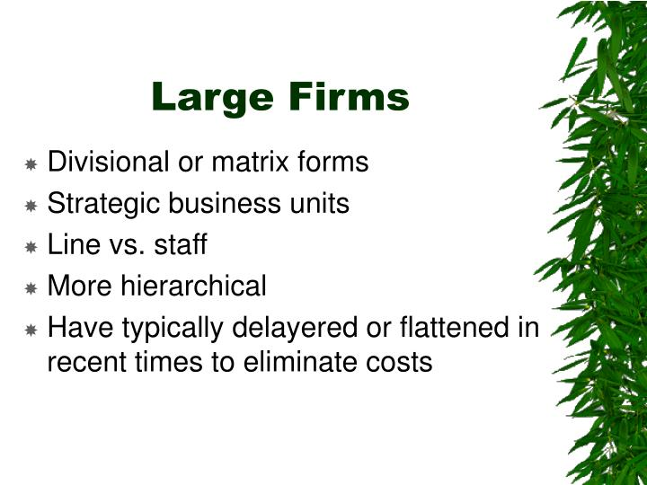 Large Firms