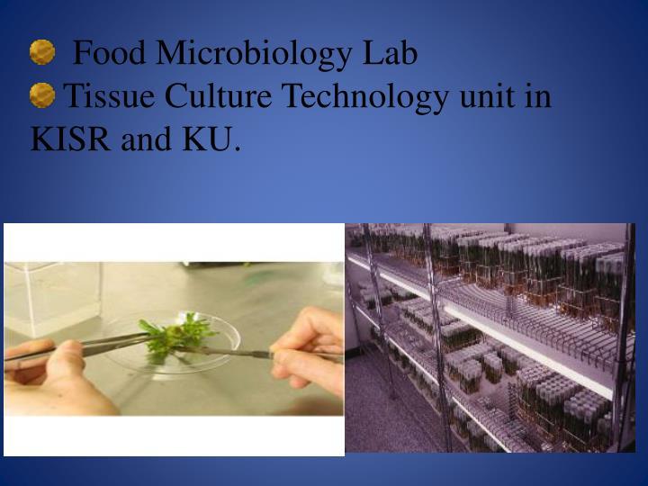 Food Microbiology Lab