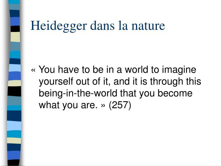 Heidegger dans la nature