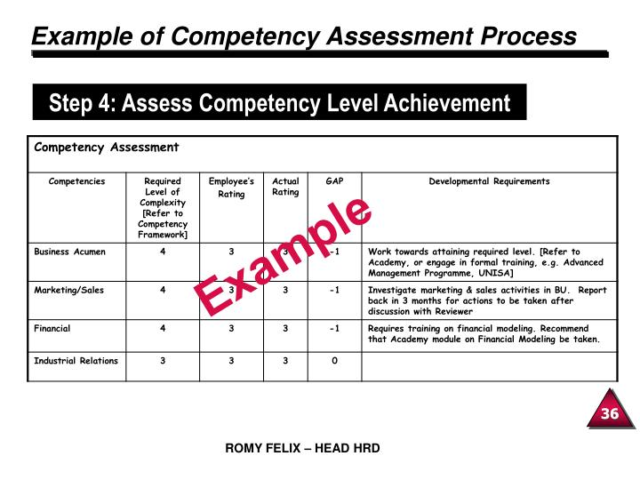 Example of Competency Assessment Process