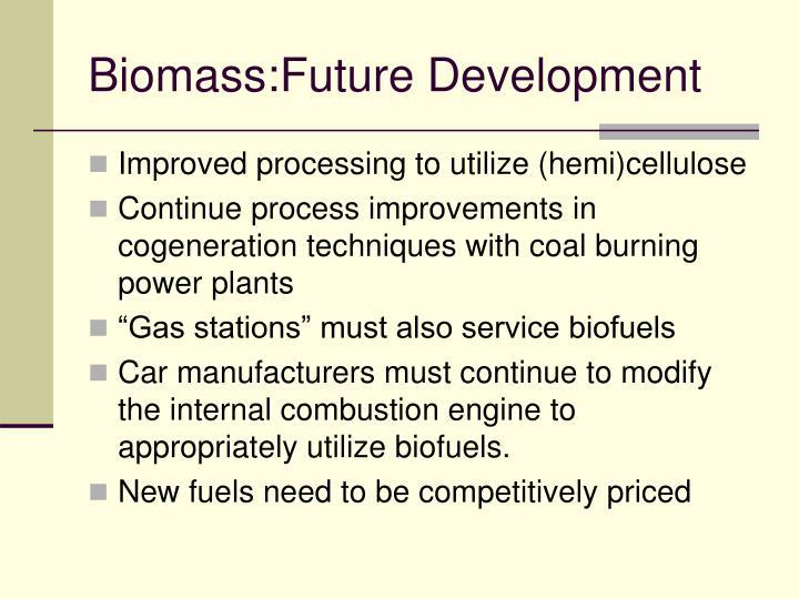 Biomass:Future Development