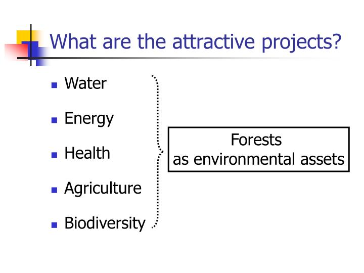What are the attractive projects?