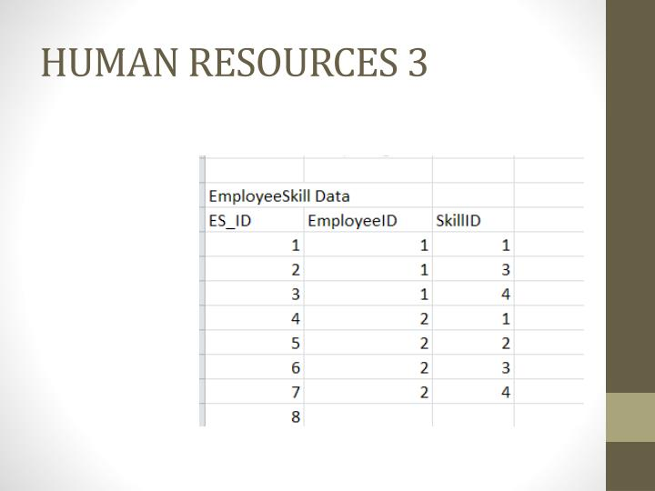 HUMAN RESOURCES 3