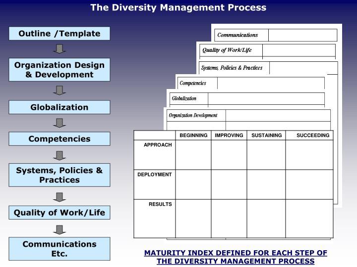 The Diversity Management Process