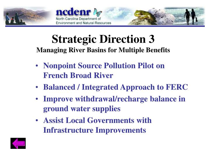 Strategic Direction 3