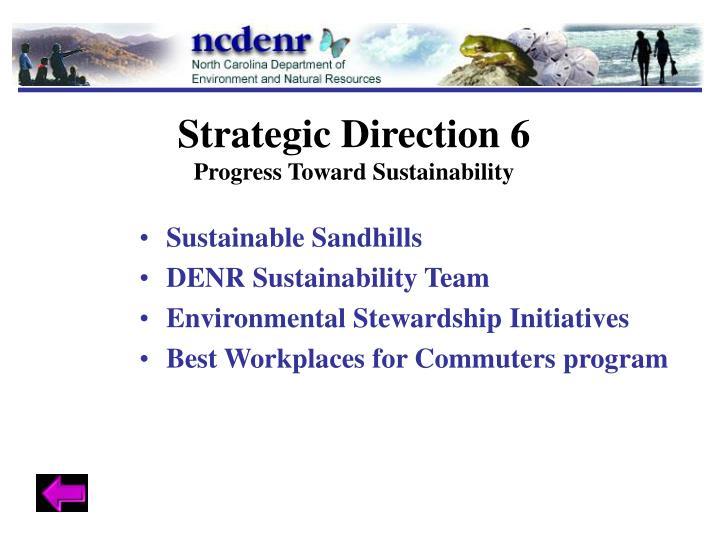 Strategic Direction 6