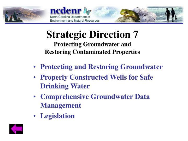Strategic Direction 7