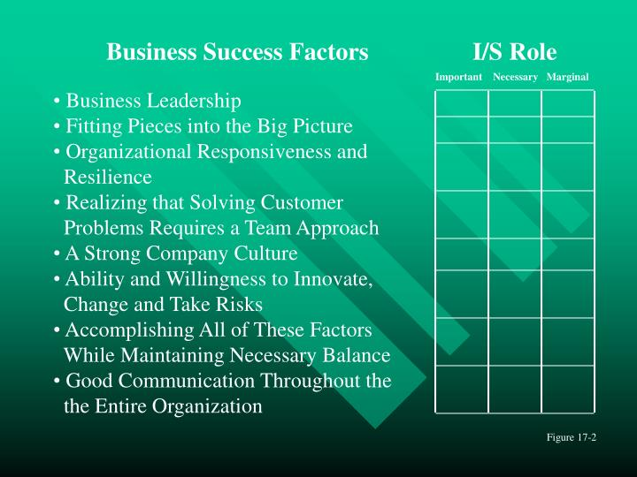 Business Success Factors