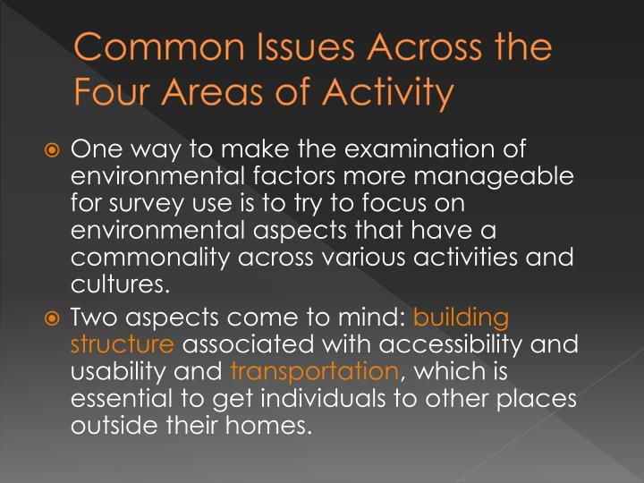 Common Issues Across the Four Areas of Activity