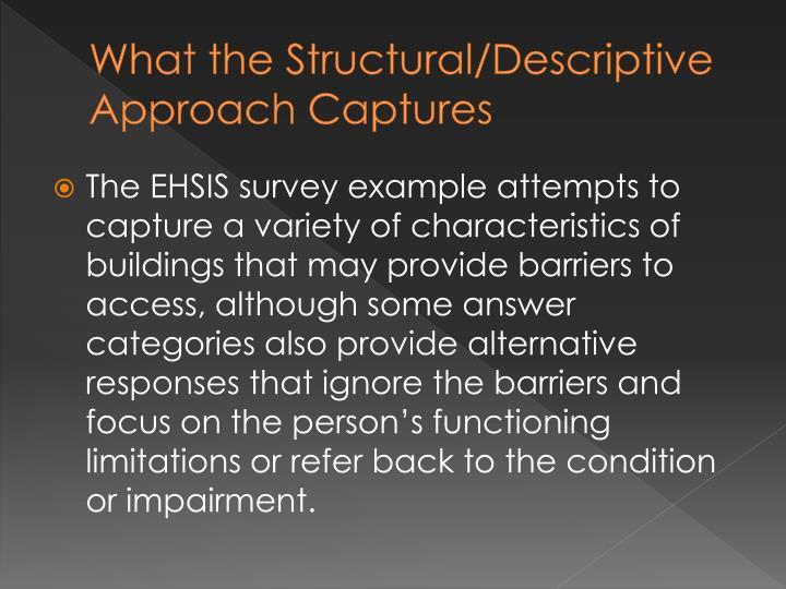 What the Structural/Descriptive Approach Captures