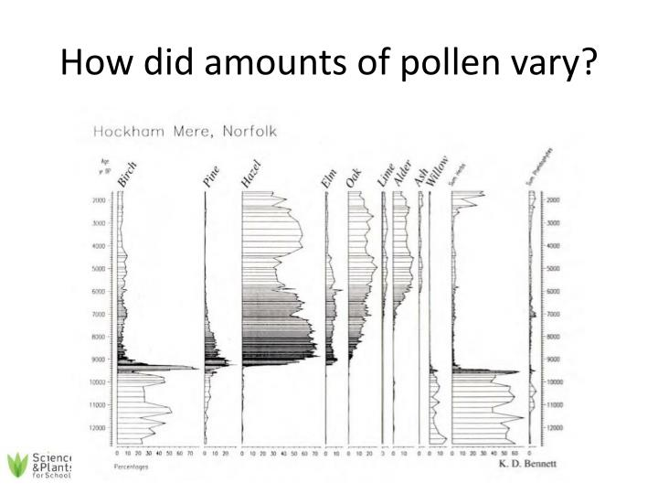 How did amounts of pollen vary?