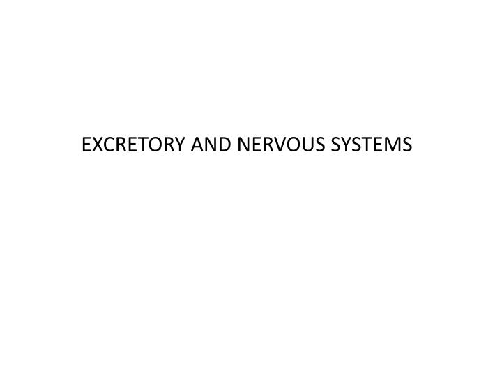 Excretory and nervous systems
