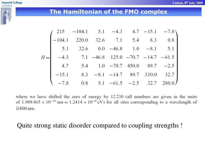 The Hamiltonian of the FMO complex
