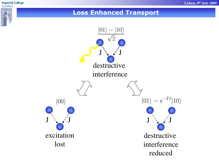 Loss Enhanced Transport