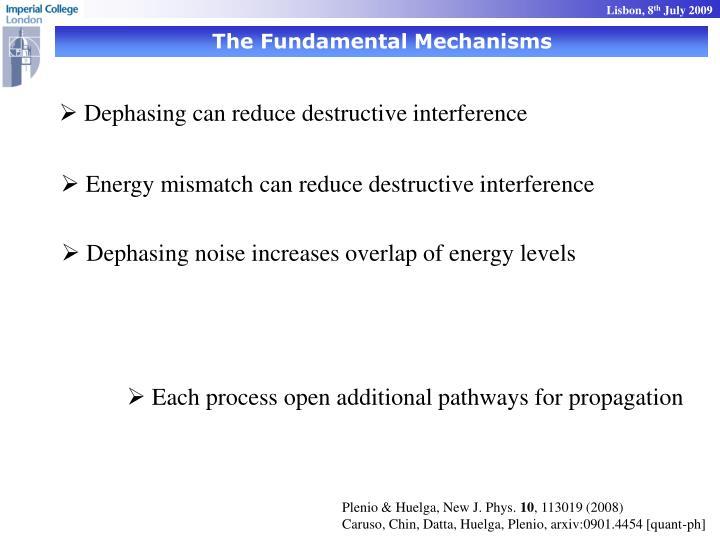 The Fundamental Mechanisms