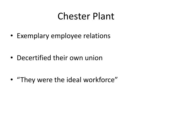 Chester Plant