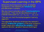 supervised learning in the bpn1