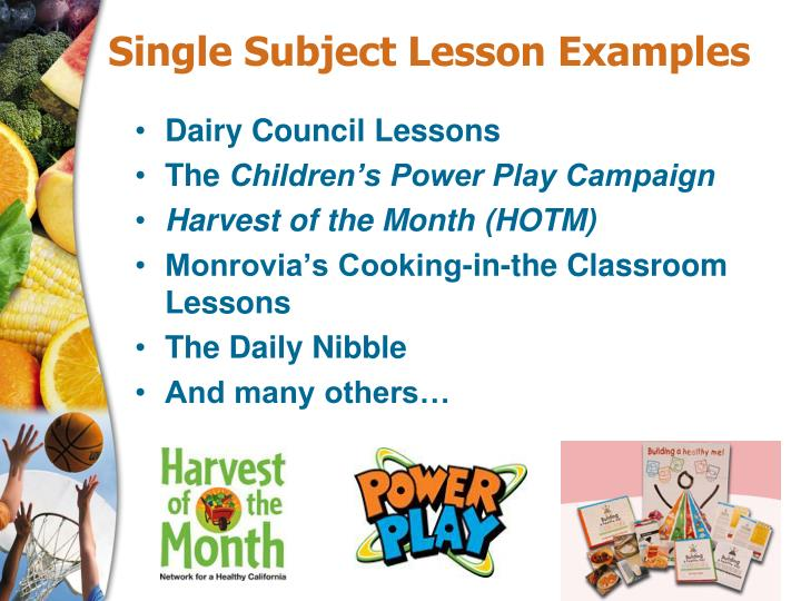 Single Subject Lesson Examples