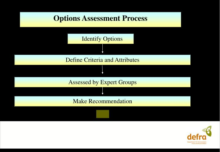 Options Assessment Process