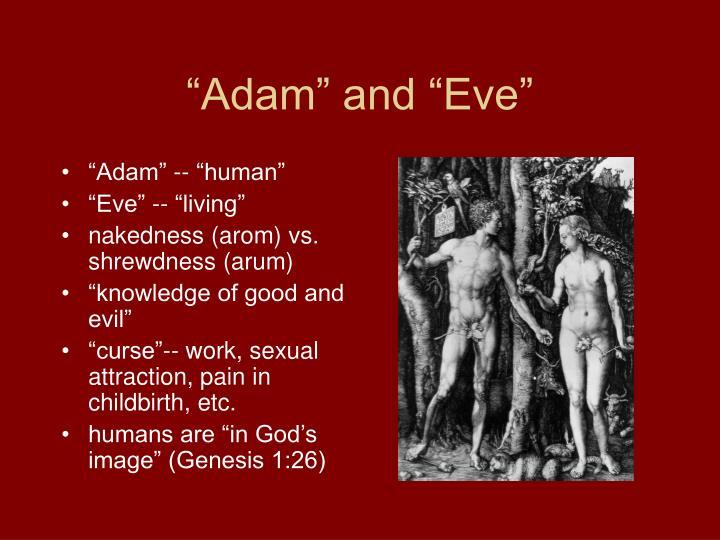"""Adam"" and ""Eve"""