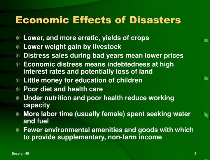 Economic Effects of Disasters