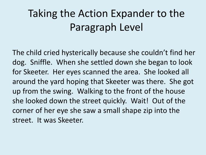Taking the Action Expander