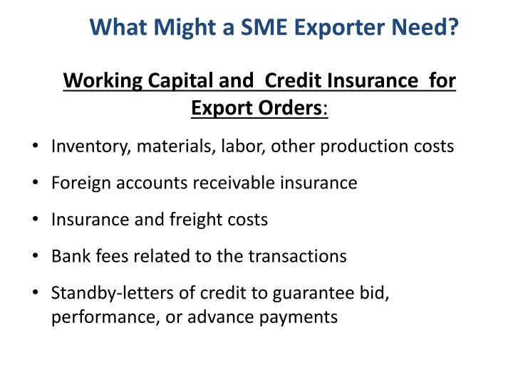 What Might a SME Exporter Need?