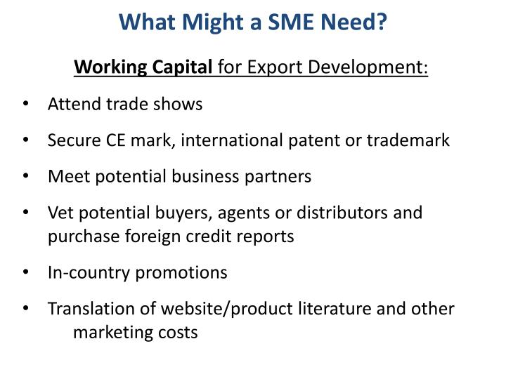What Might a SME Need?