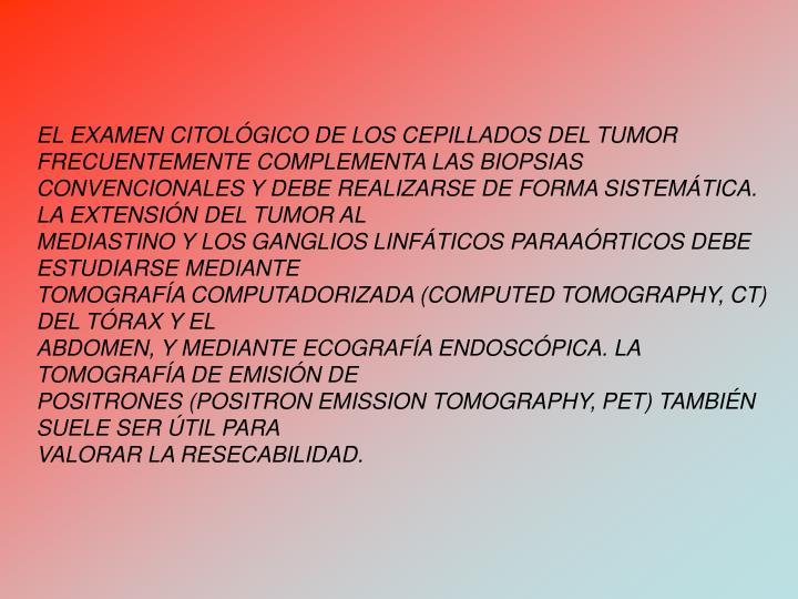 EL EXAMEN CITOLGICO DE LOS CEPILLADOS DEL TUMOR FRECUENTEMENTE COMPLEMENTA LAS BIOPSIAS