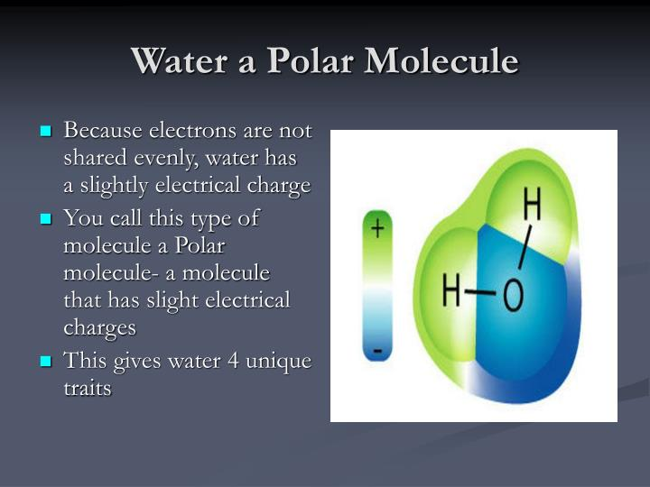Water a Polar Molecule