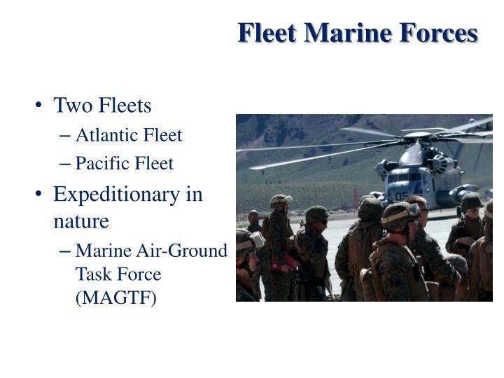 Fleet Marine Forces