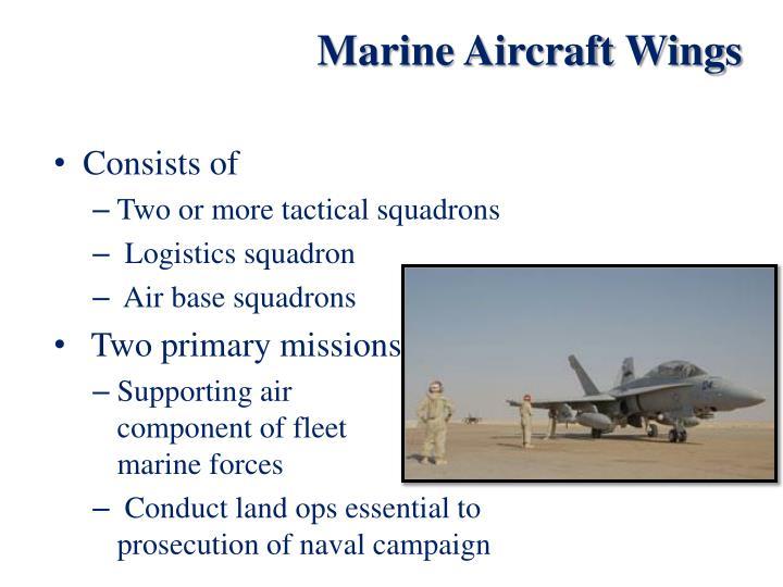 Marine Aircraft Wings