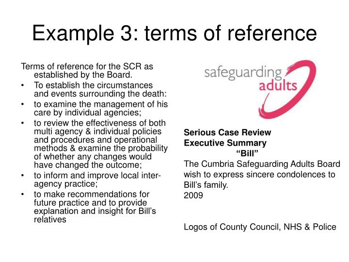 Terms of reference for the SCR as established by the Board.