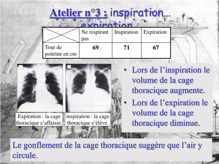 Lors de l'inspiration le volume de la cage thoracique augmente.