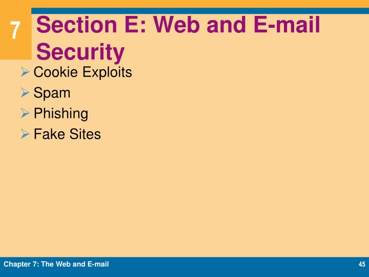 Section E: Web and E-mail Security