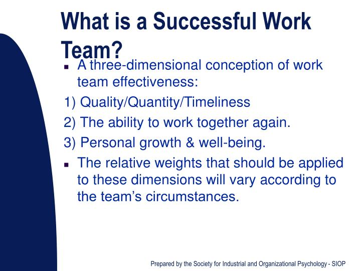 What is a Successful Work Team?