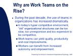 why are work teams on the rise