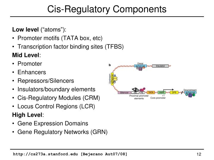 Cis-Regulatory Components
