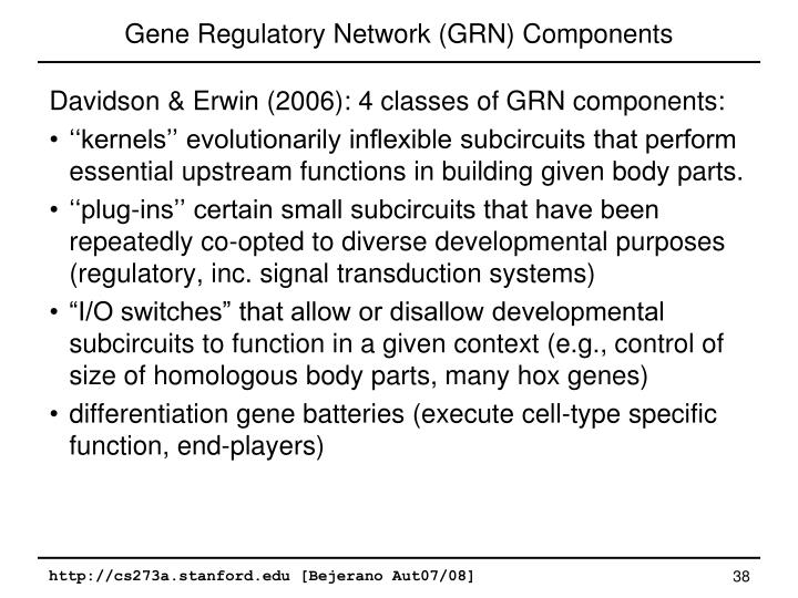 Gene Regulatory Network (GRN) Components