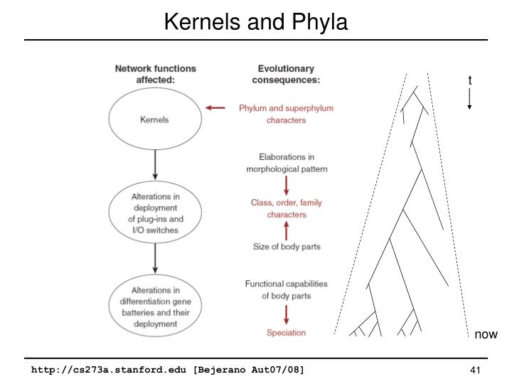 Kernels and Phyla