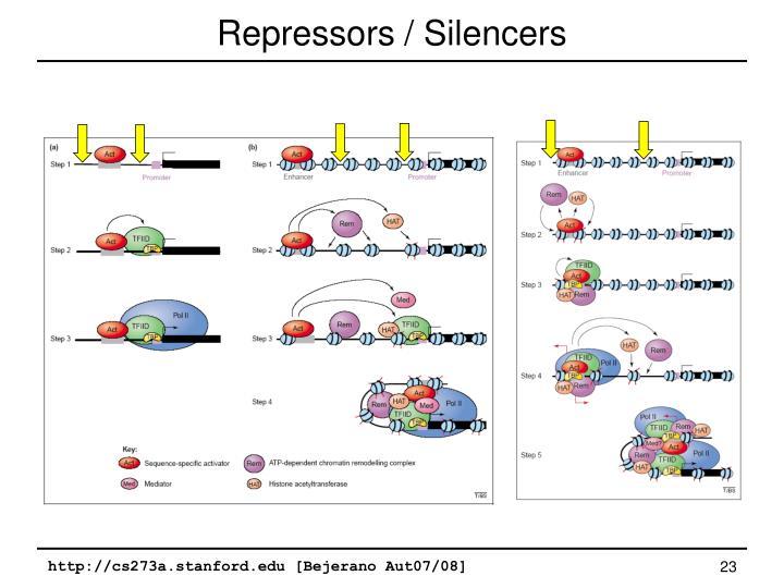 Repressors / Silencers