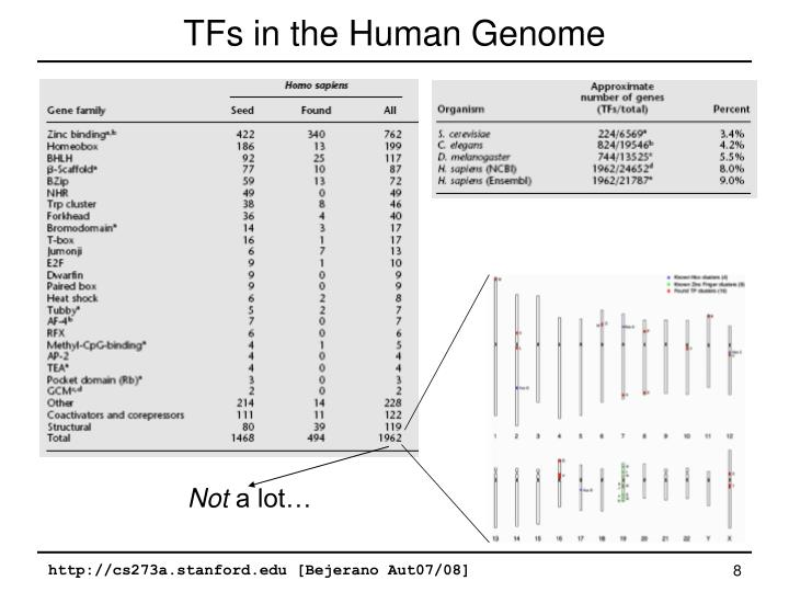 TFs in the Human Genome