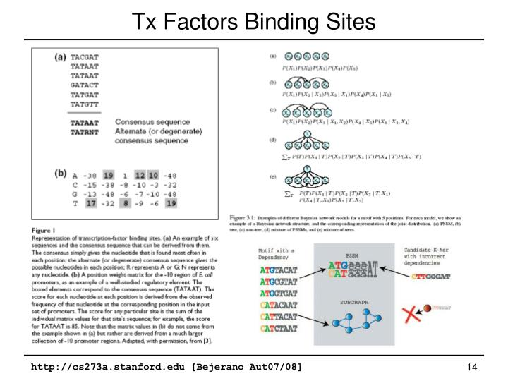 Tx Factors Binding Sites