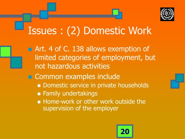 Issues : (2) Domestic Work