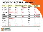 holistic picture provincial
