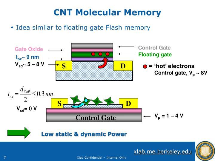 CNT Molecular Memory