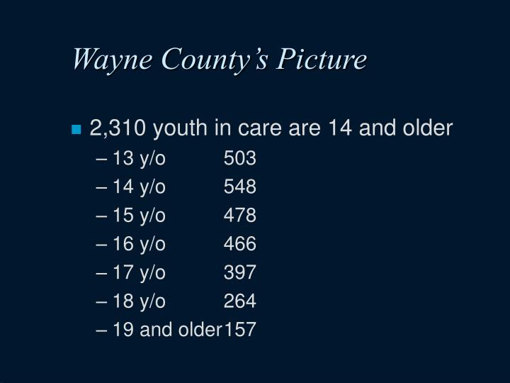 Wayne County's Picture