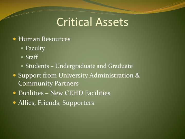 Critical Assets